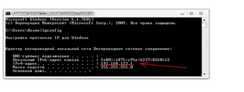 Искомый IP адрес выделен цветом